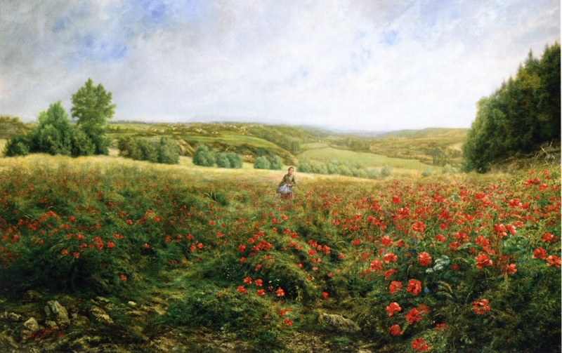 A Field of Flowers by Pierre Arthur Gaillard