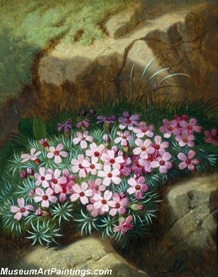 Alpine Flowers Painting