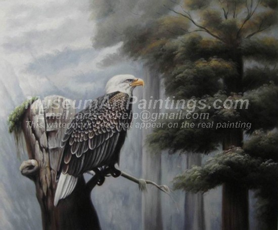 Bird Oil Paintings 005