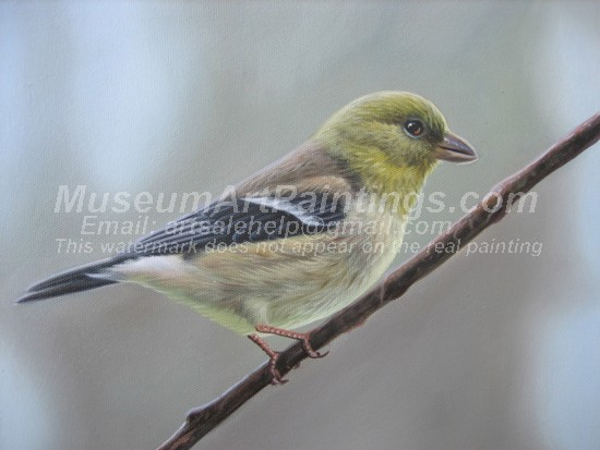 Bird Oil Paintings 006