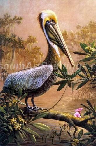 Bird Oil Paintings 015