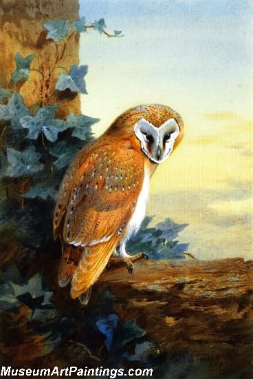 Bird Painting A Barn Owl