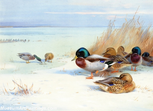 Bird Painting Mallards on a Frozen Lake