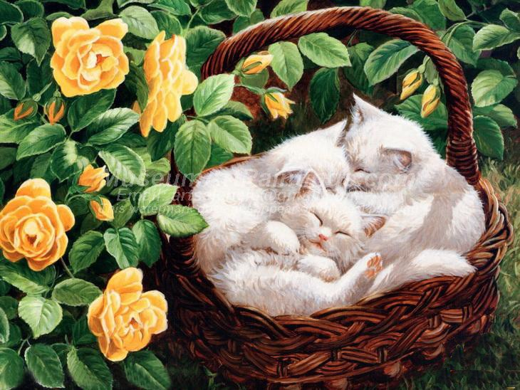 Cat Oil Paintings 009