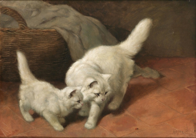 Cats and Ladybugs by Arthur Heyer