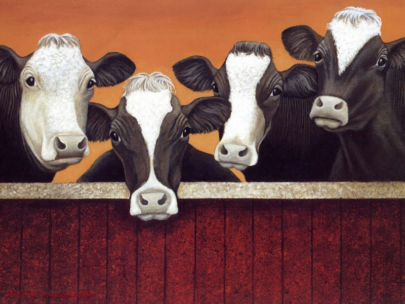 Cow Oil Paintings 006