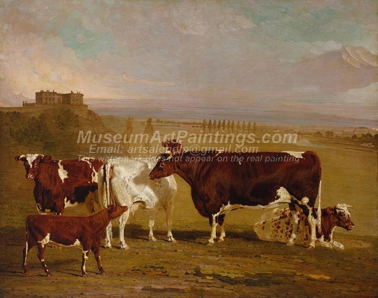 Cow Painting Portraits of Cattle of the Improved Short Horned Breed