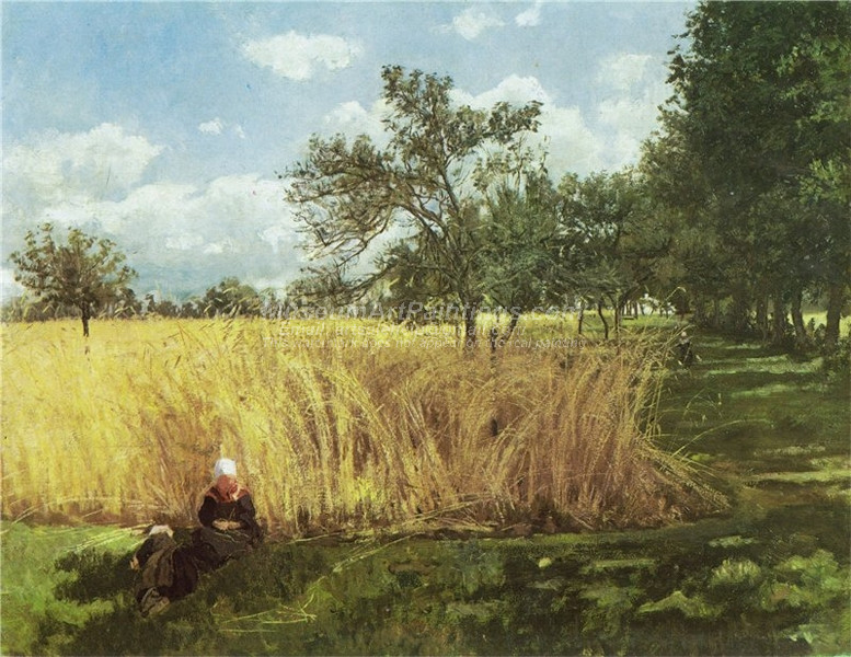 Cropland in Rochefort by Kitty Kielland