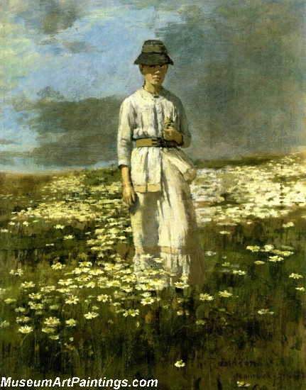 Daisy Field Nantucket Painting