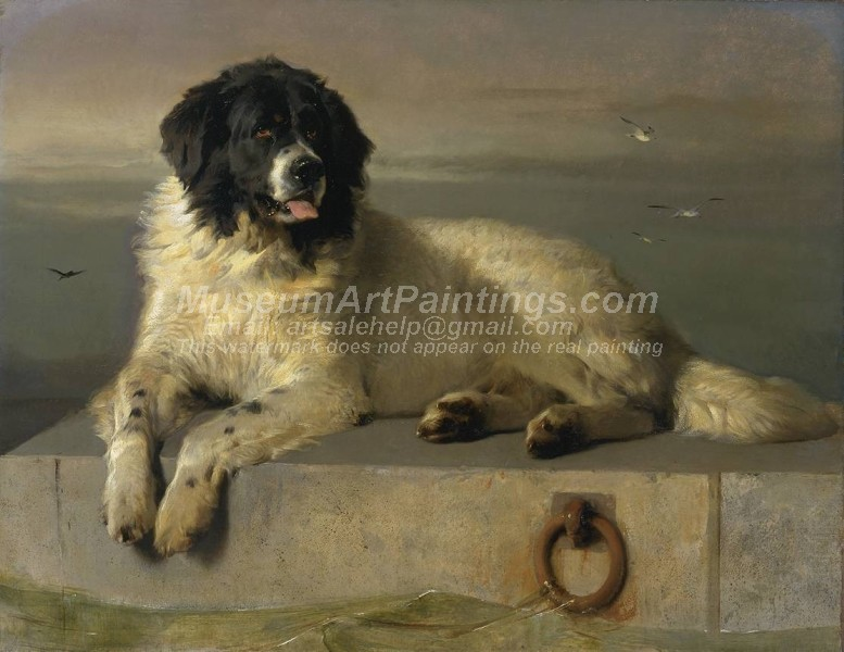 Dog Oil Paintings 015