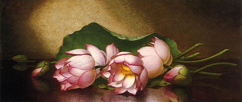Egyptian Lotus Blossom by Martin Johnson Heade