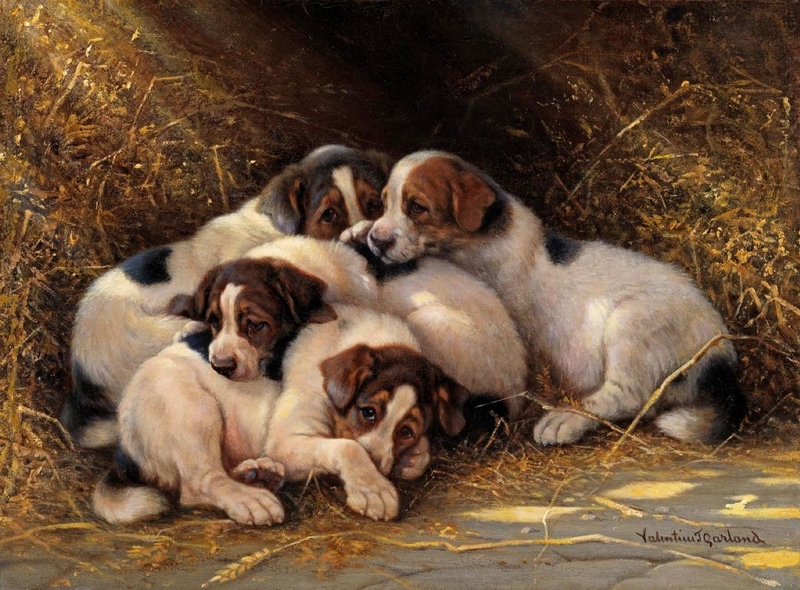 Four Puppies in a Haystack by Valentine Thomas Garland