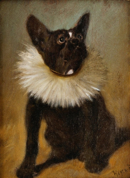 French bulldog by Arthur Heyer