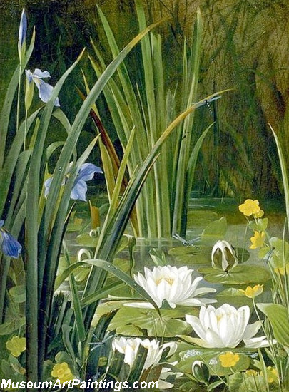 Garden Paintings Beautiful Waterlilies