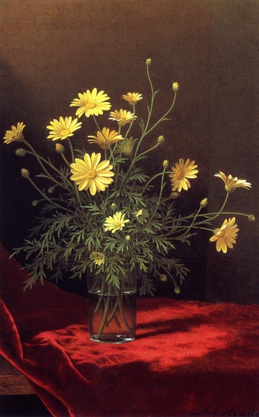 Golden Marguerites by Martin Johnson Heade