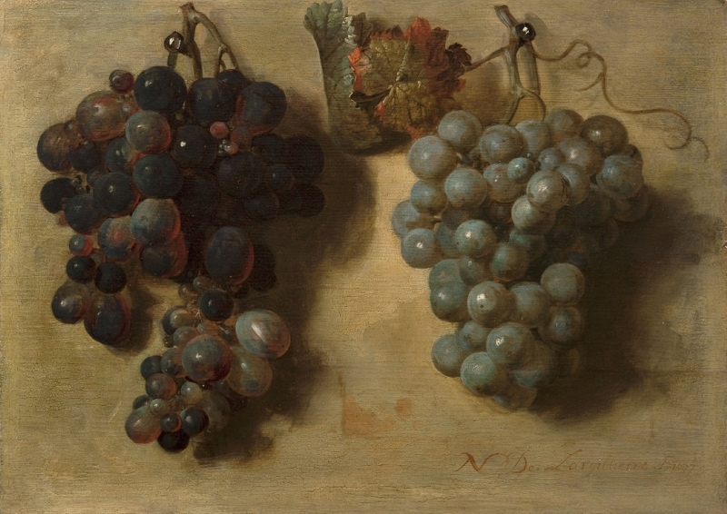 Grapes by Nicolas de Largillierre