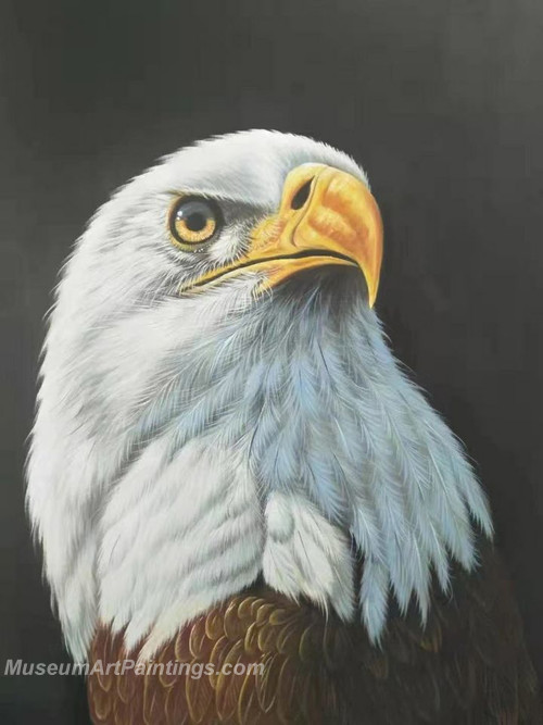 Handmade Eagle Oil Paintings HEPS3