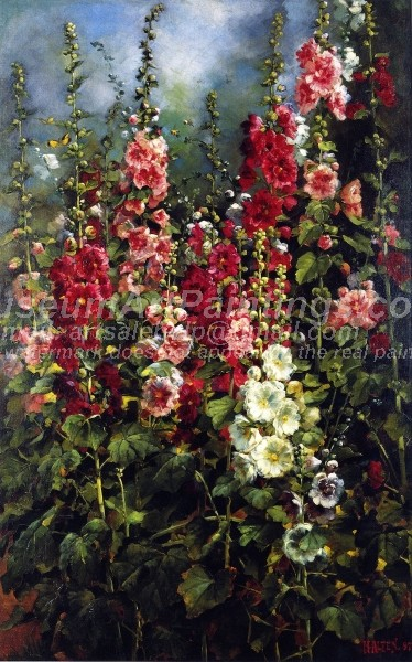 Hollyhocks by Mathias J Alten