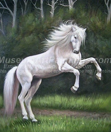 Horse Oil Paintings 012