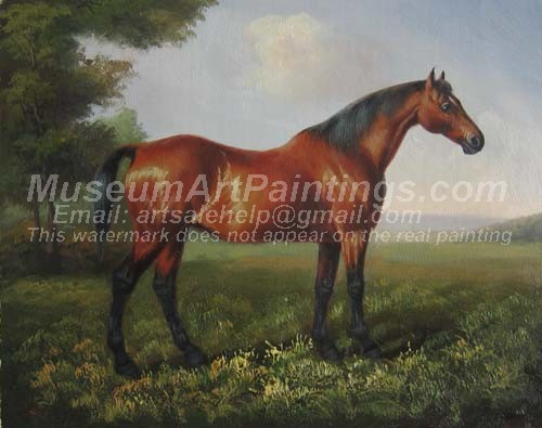 Horse Oil Paintings 026