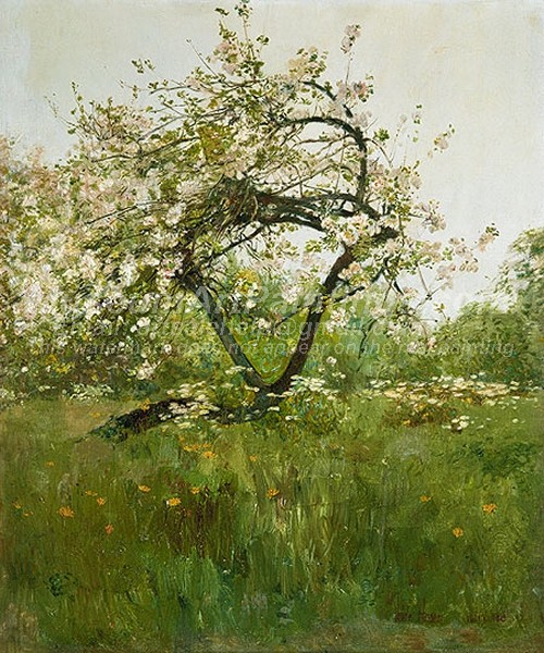 Landscape Paintings Peach Blossoms