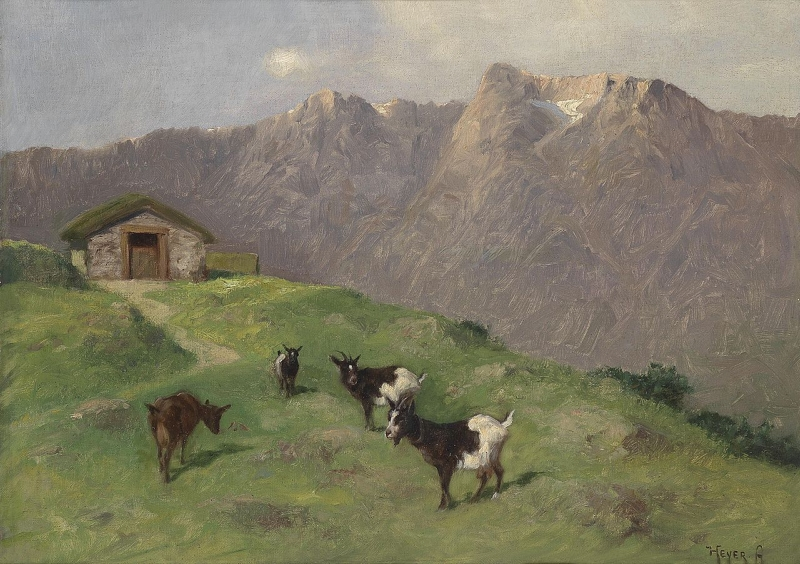 Mountain Goats by Arthur Heyer