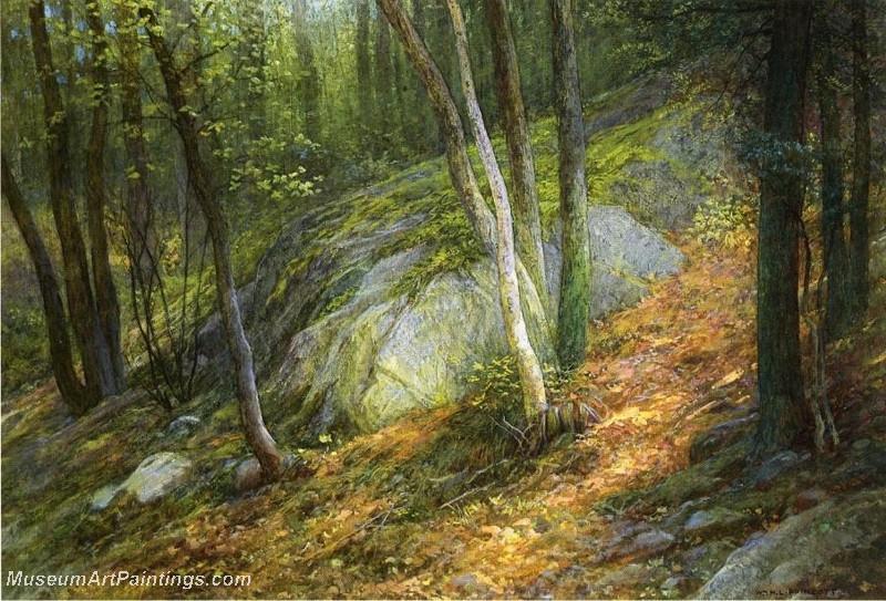 Natures Pathway by William H Lippincott