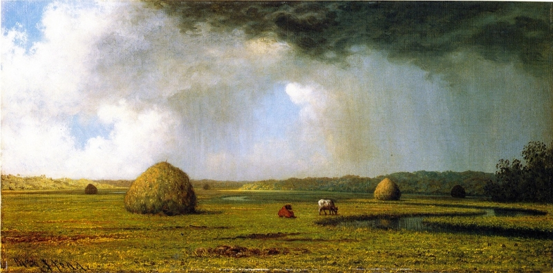 New Jersey Meadows by Martin Johnson Heade