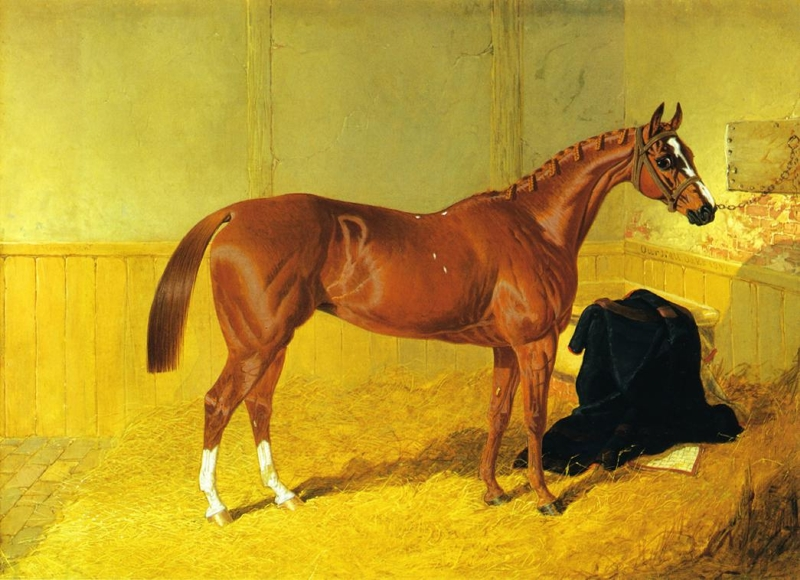 Our Nell A Bay Racehorse in a Stable by John Frederick Herring