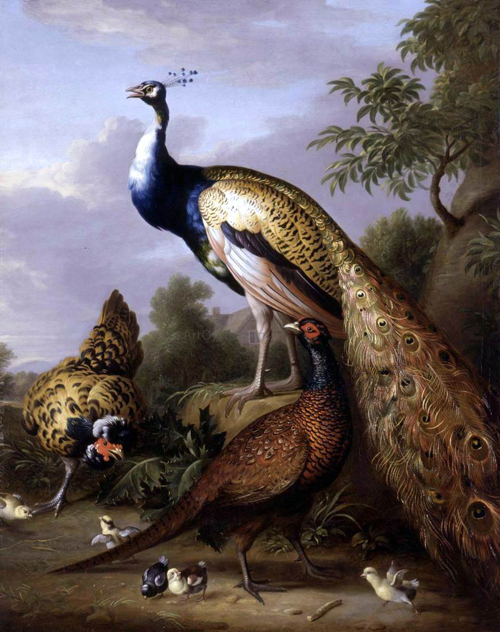 Peacock Hen and Cock Pheasant in a Landscape by Tobias Stranover