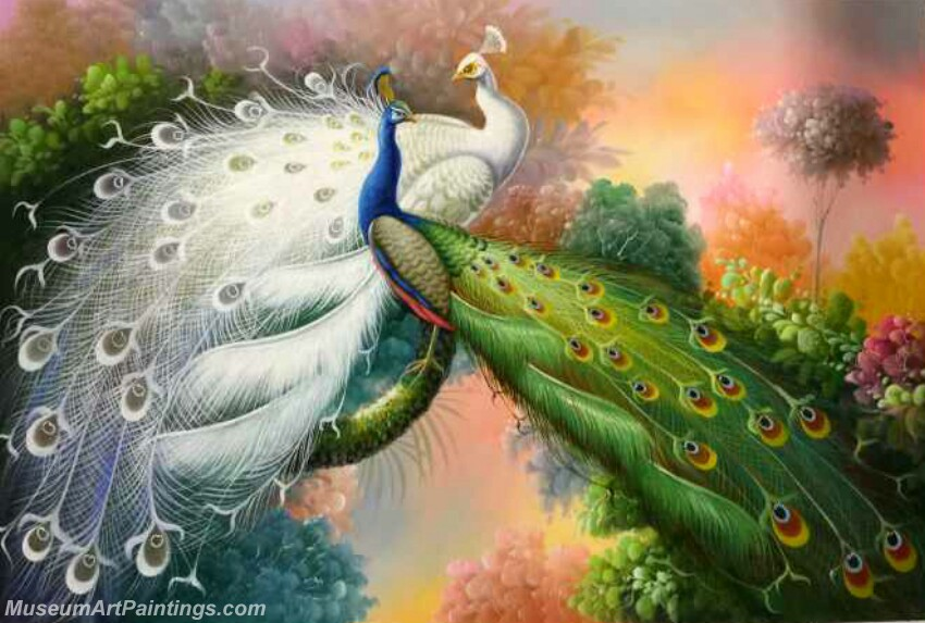 Peacock Oil Painting MA03