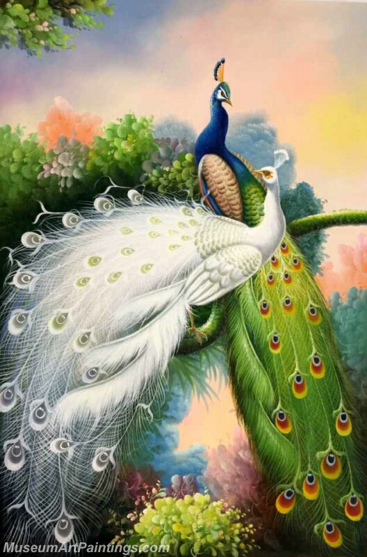 Peacock Oil Painting MA05