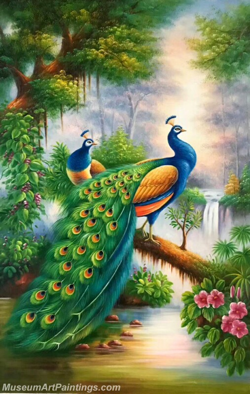 Peacock Oil Painting MA07