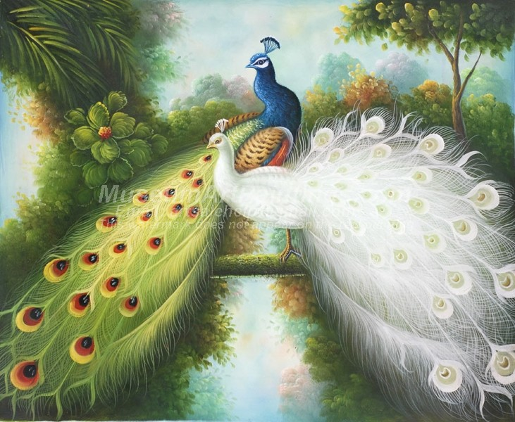 Peacock Oil Paintings 005