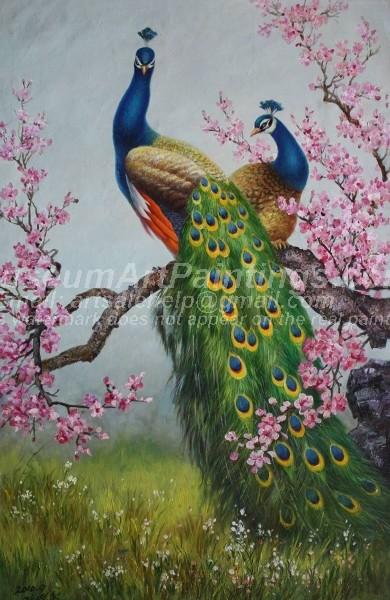Peacock Oil Paintings 006