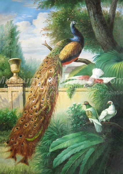 Peacock Oil Paintings 007
