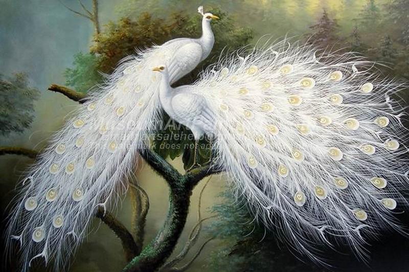 Peacock Oil Paintings 018
