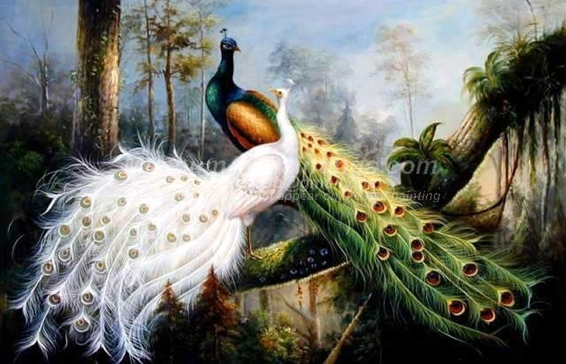 Peacock Oil Paintings 024