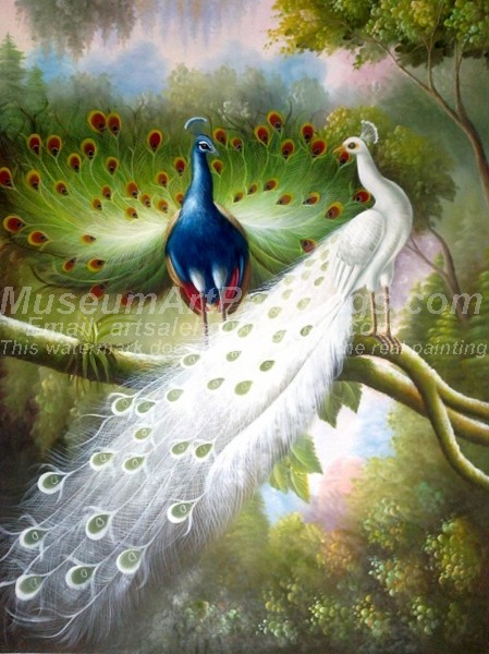 Peacock Oil Paintings 025