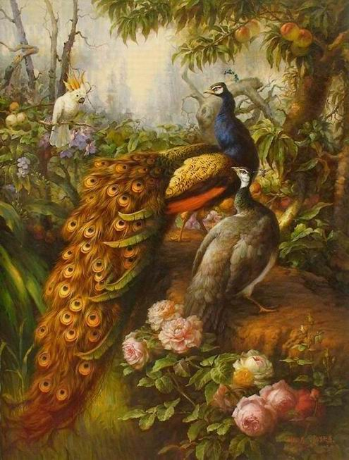 Peacock Oil Paintings 027