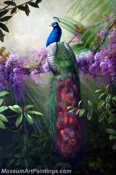 Peacock Oil Paintings PMP022