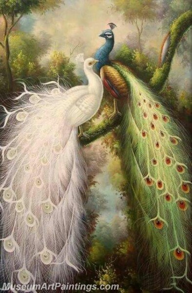 Peacock Oil Paintings PMP026