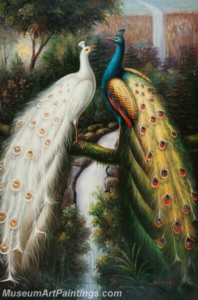 Peacock Oil Paintings PMP028