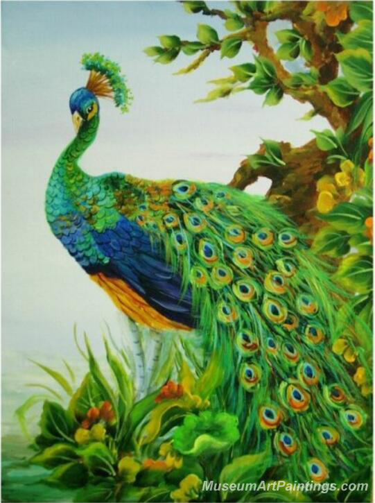 Peacock Oil Paintings PMP035