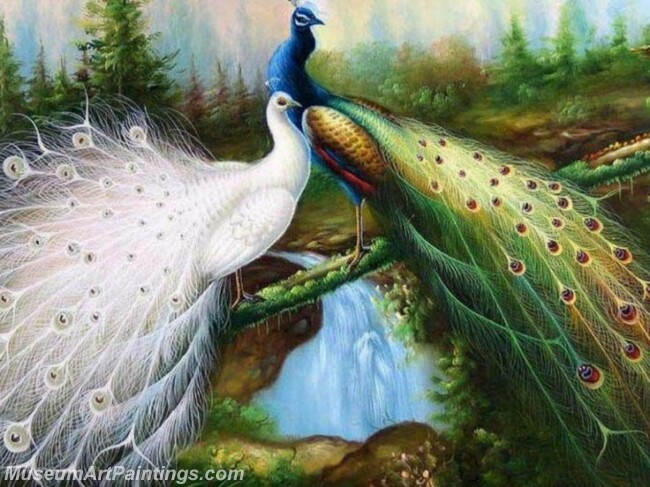 Peacock Oil Paintings PMP036