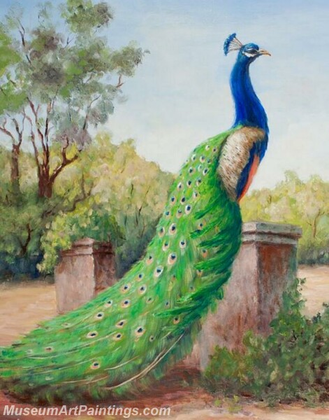 Peacock Oil Paintings PMP039