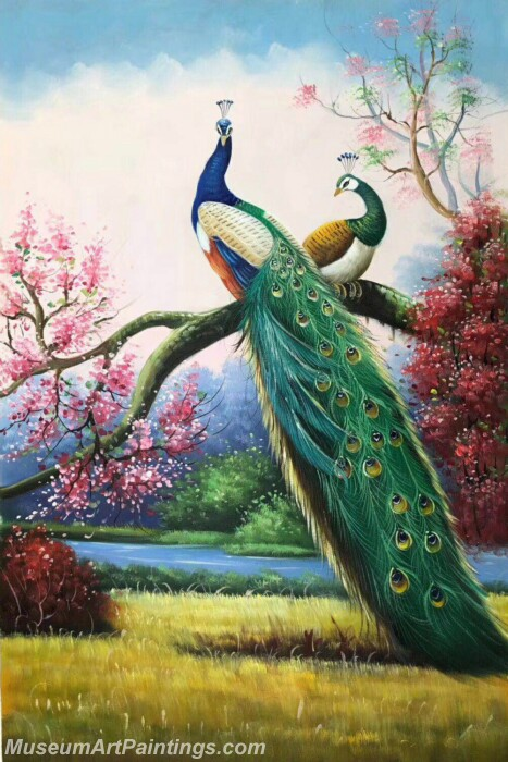 Peacock Paintings PDM03