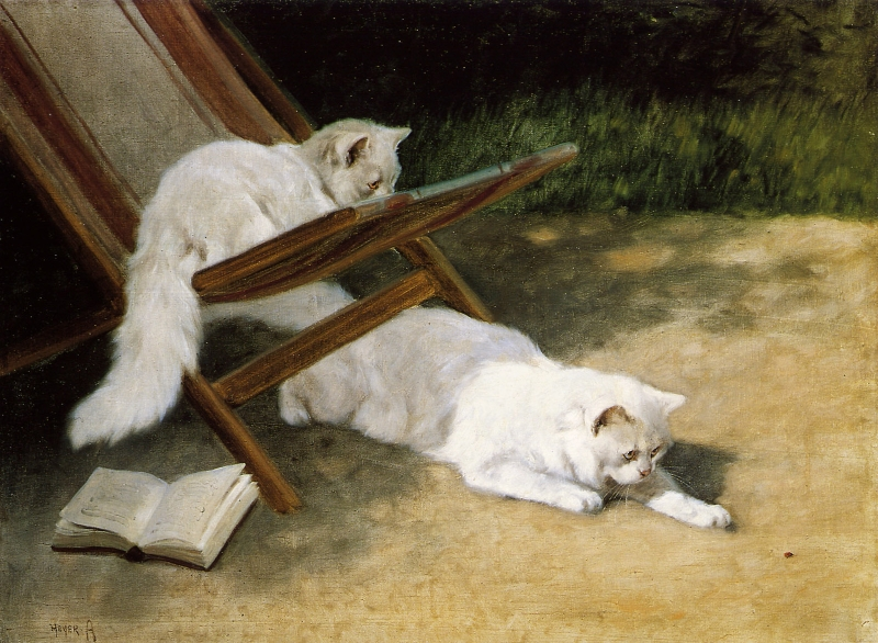 Persian Cats by Arthur Heyer
