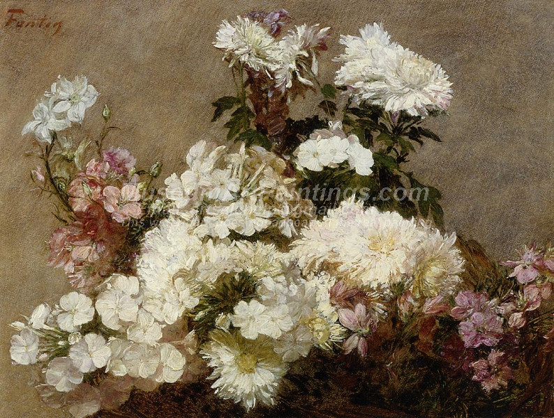 Phlox by Joseph DeCamp
