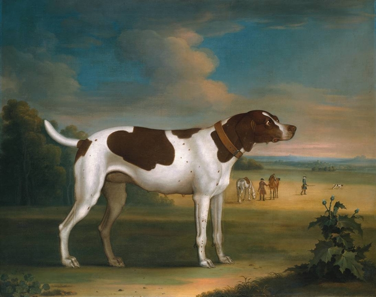 Pointer Bitch by Attributed to James Seymour